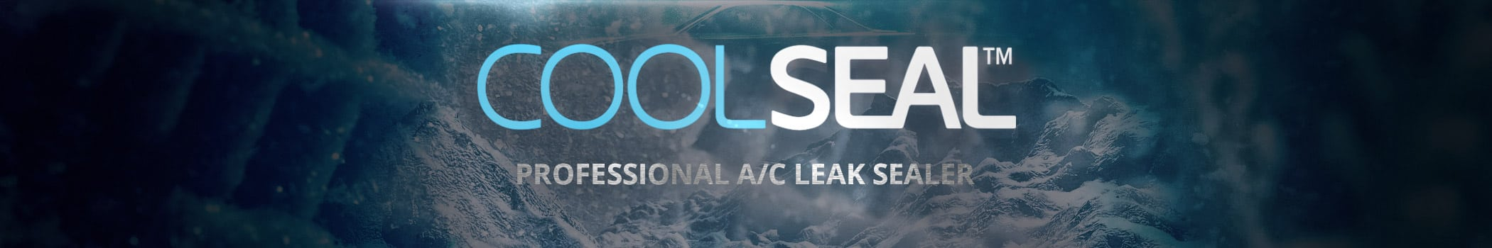 Professional A/C Leak Sealer