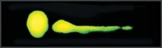 Fluoro-Lite 5 Formula